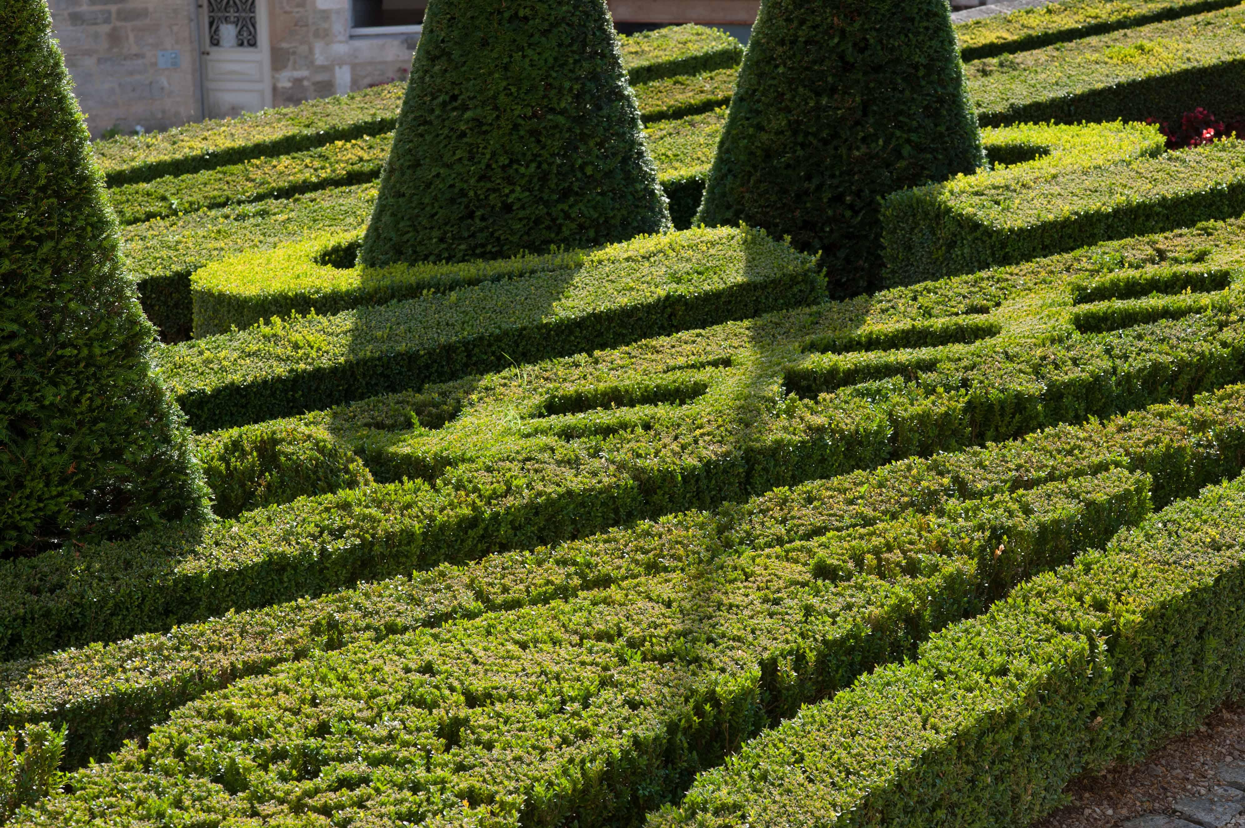 christianrohn-photographe-jardins-terrasson-dordogne