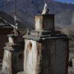 tour-des-annapurnas-christian-rohn-A7-005828